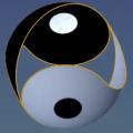 3D Yin Yang Torus