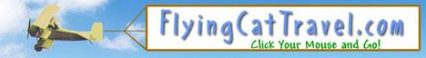 Flying Cat Travel